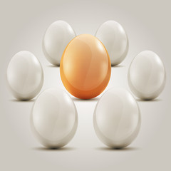 Eggs in the circle