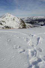 Nieve y montaña
