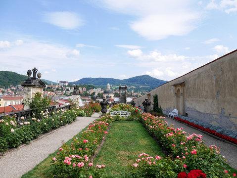 Rosengarten über den Dächern Decins