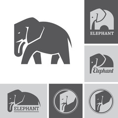 Elephant icons and symbols