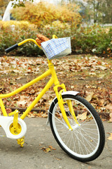 Beautiful yellow bicycle in autumn park with tasty bread in