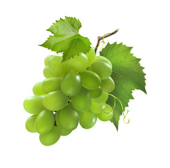 Small bunch of green grapes isolated on white background