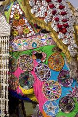 colorful elephant , festival , Jaipur, Rajasthan, India