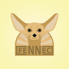 Fennec desert fox with mustache