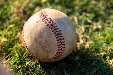 Baseball Close Up on Field