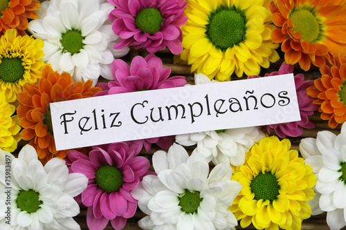 "feliz cumpleanos happy birthday in spanish with flowers"" stock, Beautiful flower"