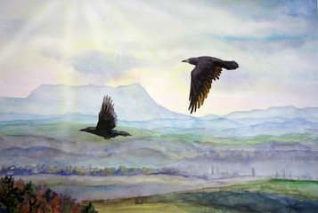 A pair of ravens flying.