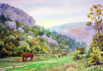 Horses in the valley.