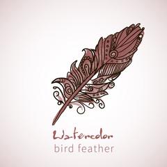 Watercolor design element feather