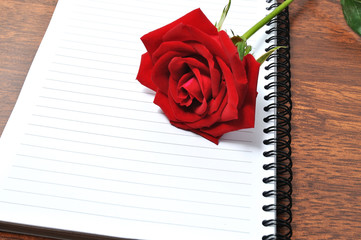 Red rose on a blank spiral notebook