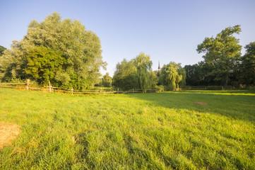 Obraz wiosenna łąka nieopodal wsi - fototapety do salonu