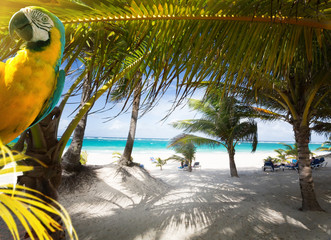 Art Vacation on Caribbean Beach Paradise Wall mural