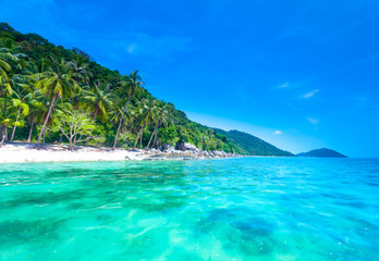 Wall Murals Green coral Tropical sea and blue sky in Koh Samui, Thailand