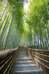 Poster Bambou Bamboo forest walkway near adashinonenbutsuji temple, Kyoto