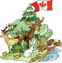 Canadian animals vector illustration
