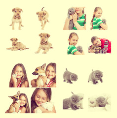 set - a little girl and pets