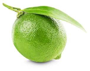 lime with leaf isolated on the white background