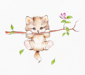 Kitten hanging on a tree