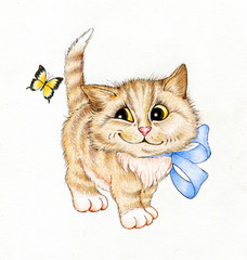 Funny cat and yellow butterfly