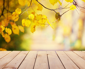 Wooden board on autumn park background
