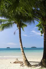 Palm View Coconut Coast