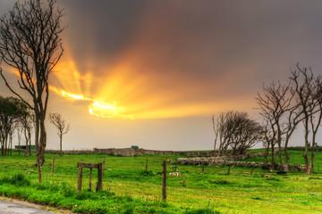 Idyllic sunset over the meadow in Ireland
