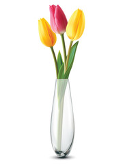 Bouquet of tulips in a glass vase on a white. Vector illustratio