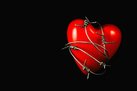 Heart in Barbed Wire on Black 2