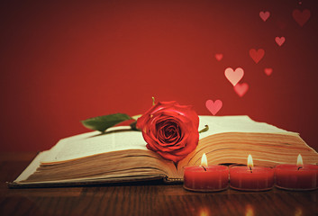 Fototapete - Red rose on the book