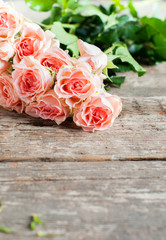 Tender Pink Roses in sunshine light, toned image, vintage
