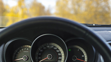 Car steering wheel in autumn