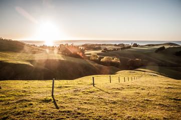 Canvas Prints New Zealand New Zealand sunrise