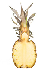 Pineapple vertical cross section