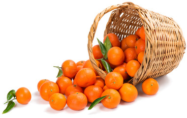 Wall Mural - underlying basket with tangerines spilling on a white