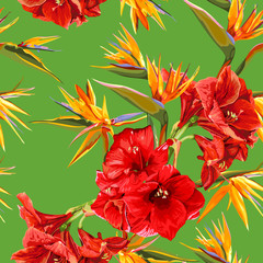 seamless pattern of flowers of amaryllis and strelitzia