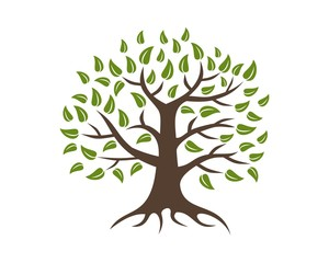 tree logo template v.2