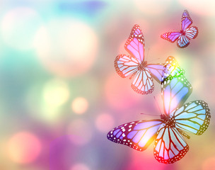 Light natural background with butterfly