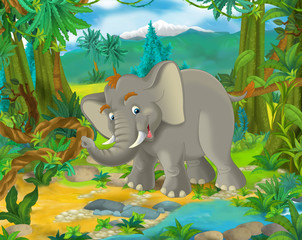 Cartoon scene - wild Asia animals - elephant - illustration for the children