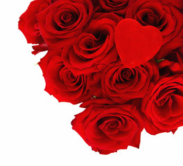 Red Roses with a Velvet Heart