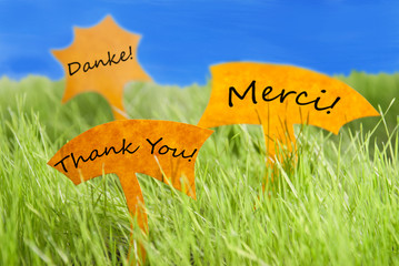 Three Labels With Thank You In Different Languages And Blue Sky