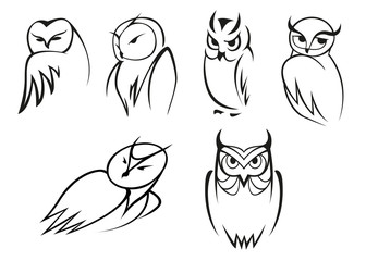 Owl bird icons in doodle sketch outline style