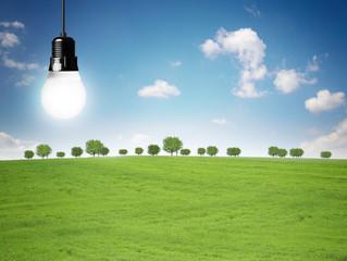 Energiesparlampe / Landschaft