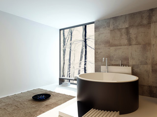 Contemporary design luxury bathroom interior