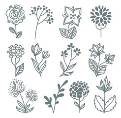 vector hand drawn flowers collection