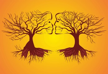 drzewa,