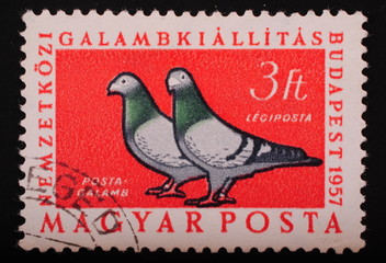 Hungari 1957: Postage stamp image of two doves