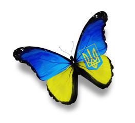 Ukrainian flag butterfly with Coat of Arms, isolated on white