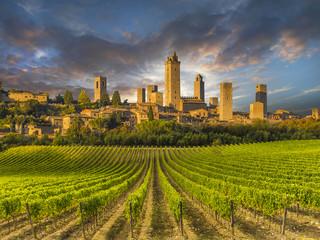 Printed kitchen splashbacks Tuscany Vineyards of San Gimignano, Tuscany, Italy