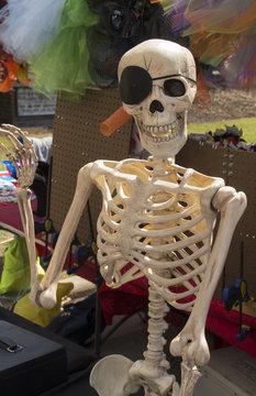 Skelton Pirate