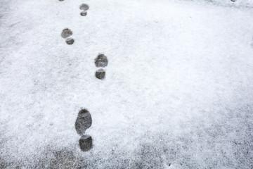 降った雪についた足跡